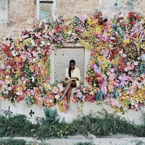 Mur de fleur (printemps)