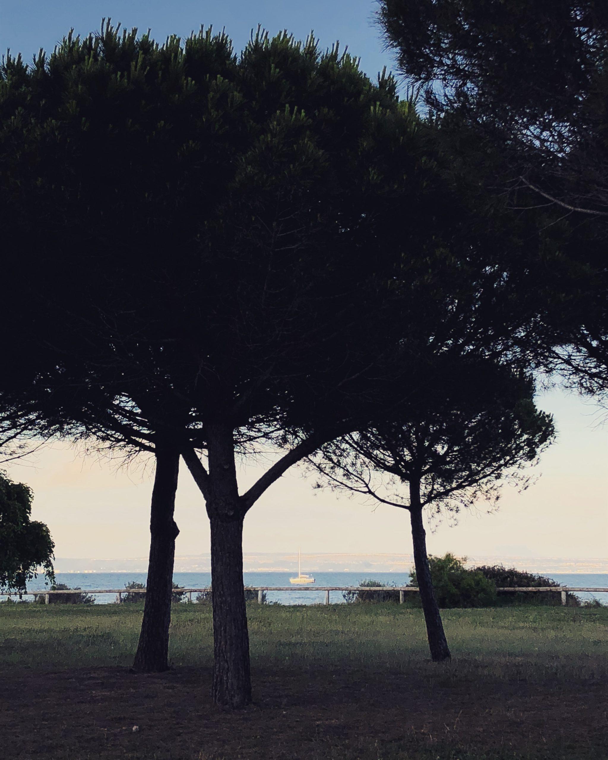 #instantané : Partir en voyage